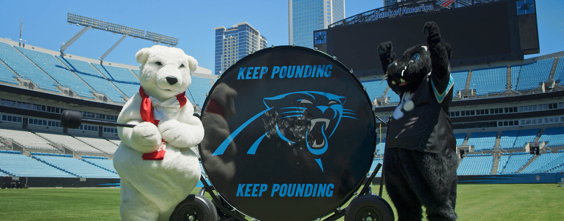 coca cola polar bear and carolina panthers sir purr beat drum at bank of america stadium with nowsay film crew in charlotte north carolina